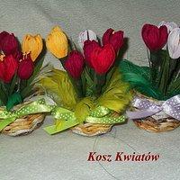 Kwiaty Wiosenne Zdjęcia Krokusy Przebiśniegi Sasanka Chomikuj